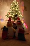 Christmas at the Mann'sHouse