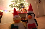 Ducky and PembeltonChristmas
