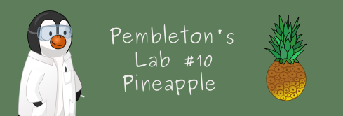 Pembletons Lab 10 Pineapple